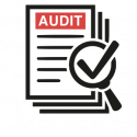 Audit-review